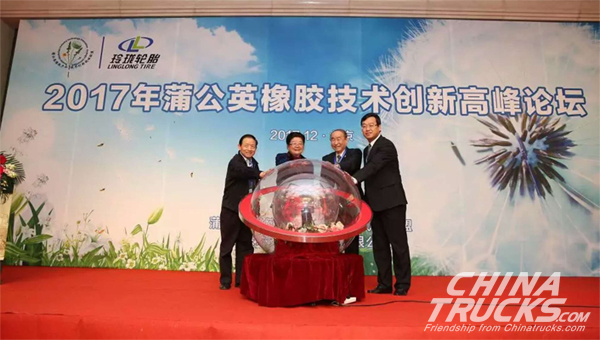 Linglong Focused On Dandelion Rubber Development
