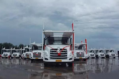 Liuzhou Motor Delivered 80 Chenglong T5 to Customer