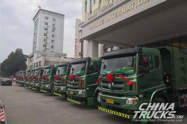 Sinotruk CDW Sold 100 Units Lishi 6*4 Engineering Trucks