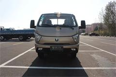 Flyday Ditu MX Dual Fuel  Truck